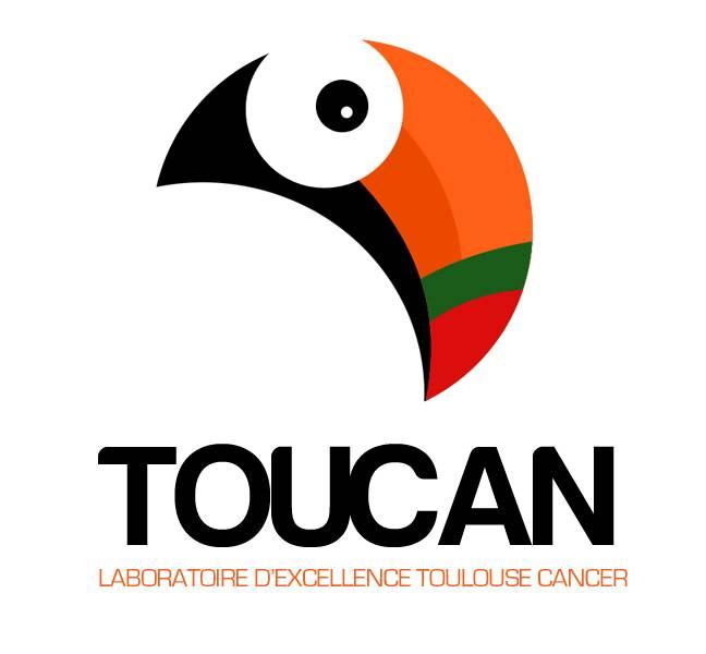 TOUCAN_web2